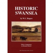 Books about Swansea